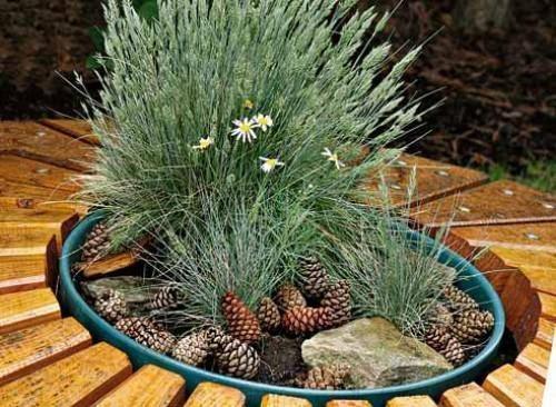 Фото: украшение крышки септика растительностью