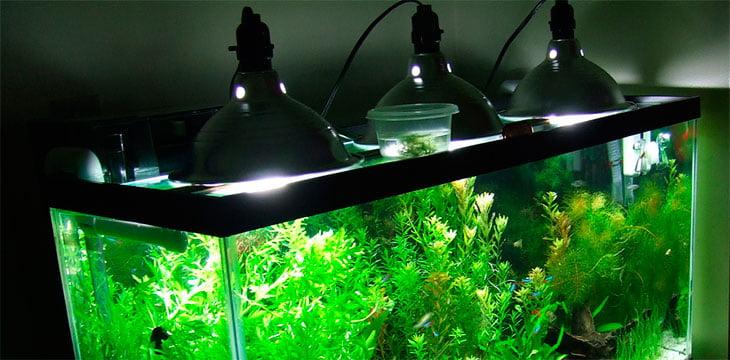 Как сделать освещение для аквариума своими 113