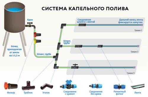 Фото: Общая схема капельного полива