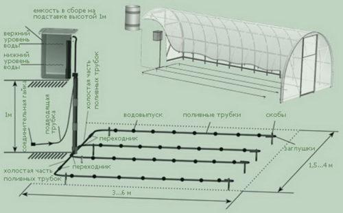 Фото: общая схема капельного полива в теплице