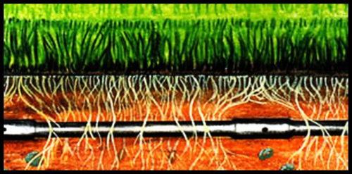 Фото: Укладка системы на глубину корней