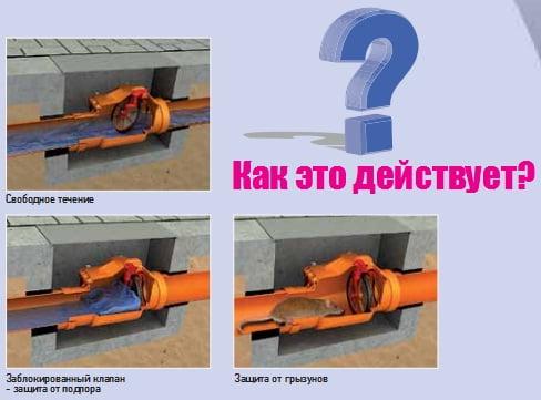 Фото: принцип функционирования обратного клапана